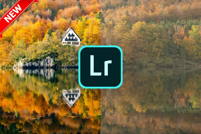 Lightroom Photo Editing Course